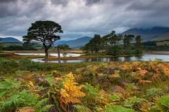 003. Loch Tulla