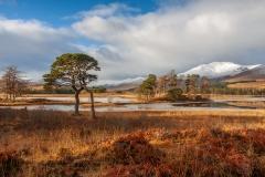 013.  Loch Tulla