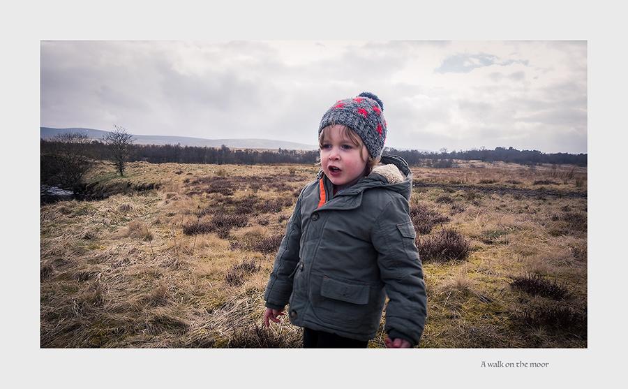 441. A walk on the Muirkirk moors (memory Lane