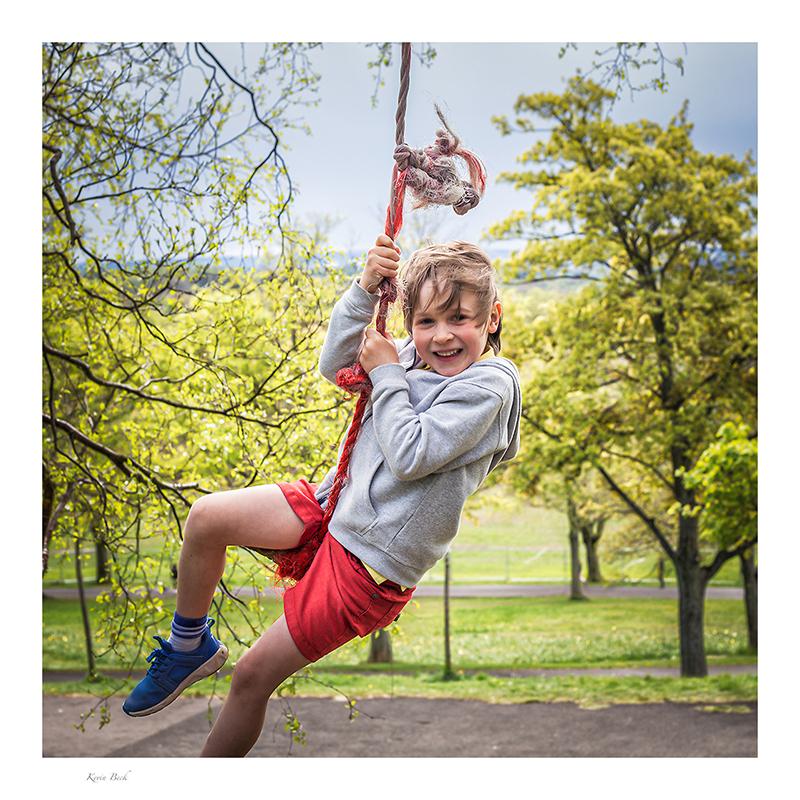 636.   Tree swing in the park