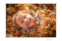 485. Autumn Warmth