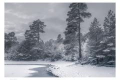 361.  Loch Vaa,  Speyside